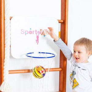 Кольцо баскетбольное со щитом SportsWill